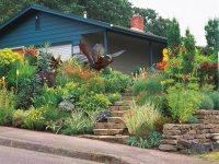 Landscaping a Tiny Garden   Garden Design
