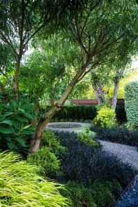 Small Garden Gets Tropical Makeover | Garden Design