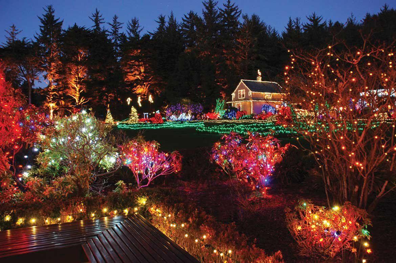 Earth 3d Live Wallpaper Windows 7 10 Gardens That Glitter With Holiday Lights Garden