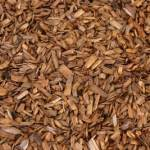How to Use Mulch in Your Garden