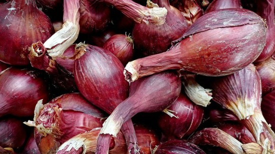 Grow Shallots in Home Garden