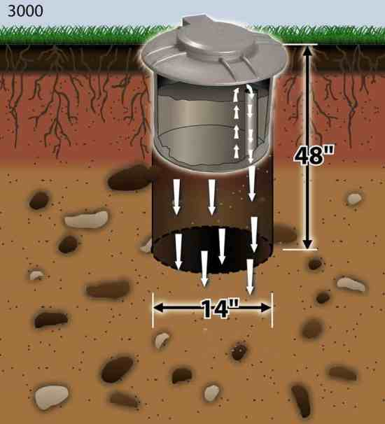 easy ways to clean dog poop out of yard with septic system