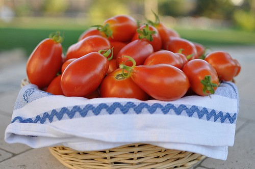 roma tomatoes calories nutrition