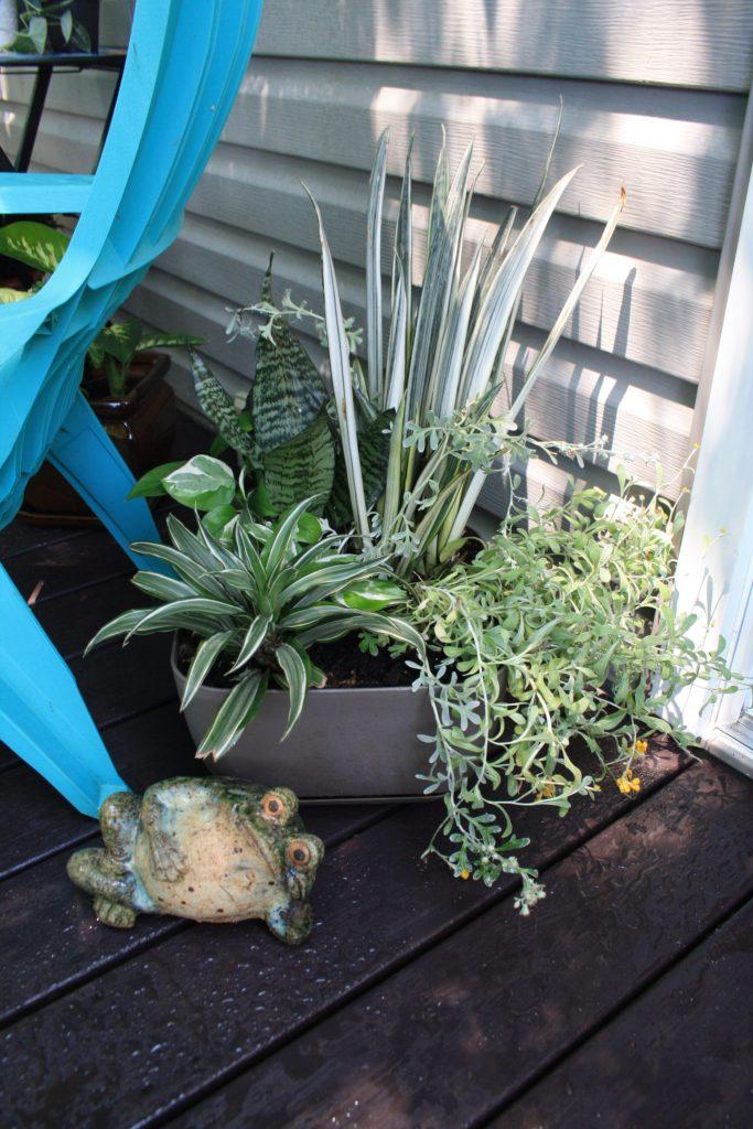 Silver & Green Planter