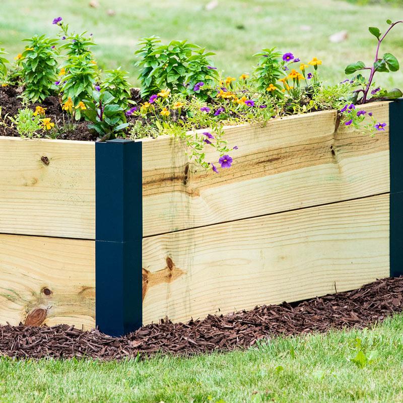 First Time Veggie Garden\u2014Where to Start? Gardens Alive!