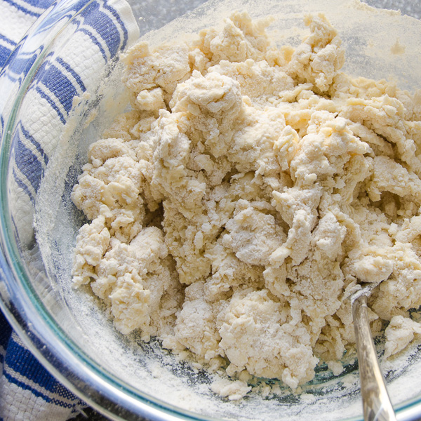 smoky turkey empanadas |Garlic + Zest
