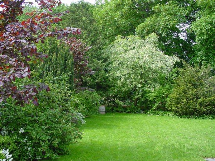 Freiwachsende Hecke mit Staudenbepflanzung Garten Pinterest - garten am hang