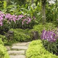 Gärten am Reiseweg