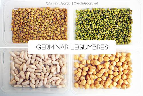 Legumbres en remojo para germinar - Cómo cocinar con legumbres - GastronomiaVegana.org