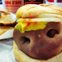 Snoot sandwich