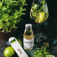 Cocktail-Rezept Freshness Lover