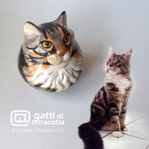 ritratti felino-felino
