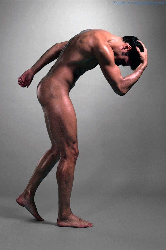 The Artistic Male Nude 2 The Artistic Male Nude