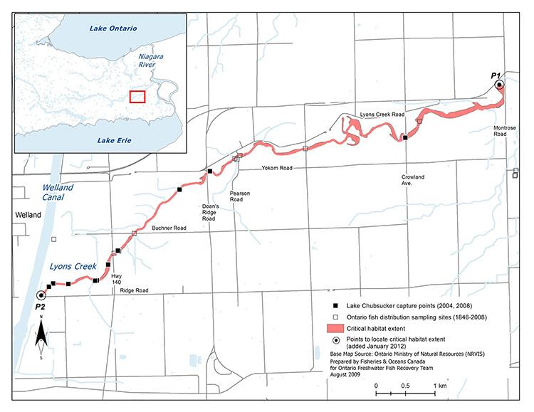 Canada Gazette \u2013 Critical Habitat of the Lake Chubsucker (Erimyzon