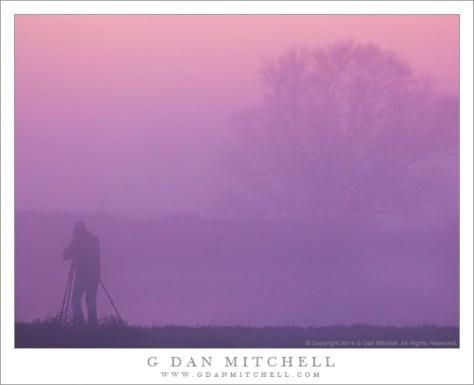 Photographer, Fog