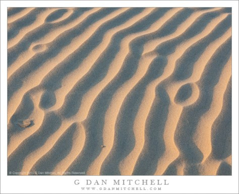 Sand Patterns, Evening Light