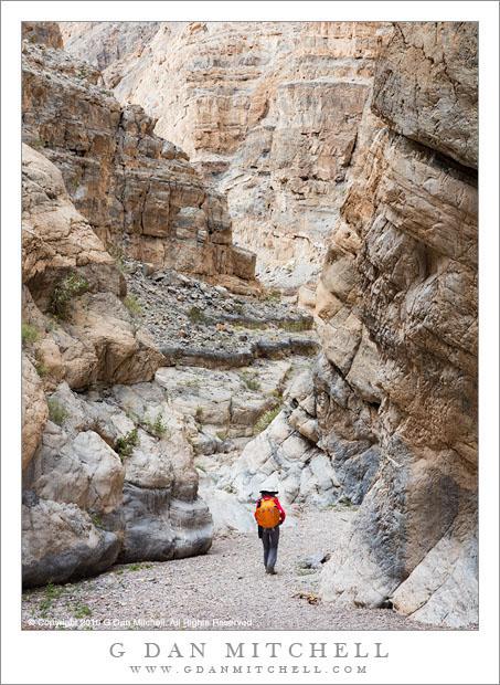 Desert Canyon Hiking