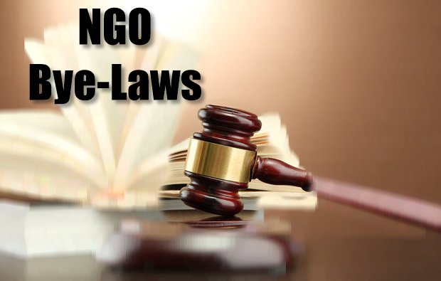 Constituting a Constitution A sample set of NGO Bye-Laws - Ngo Bylaws Template