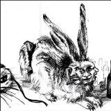 amazon-rabid-rabbit