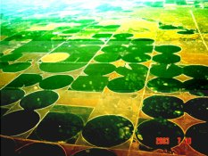 crop circles center pivot irrigation in Google Earth