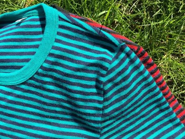 wild stripes short3