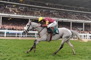 Grand National 2012 Tip, Chicago Grey