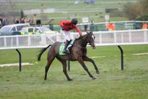Johns Spirit won the PP Gold Cup