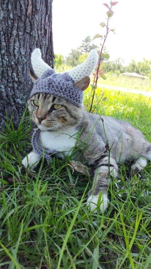 Kitty Viking Helmet Gray - Geek Decor