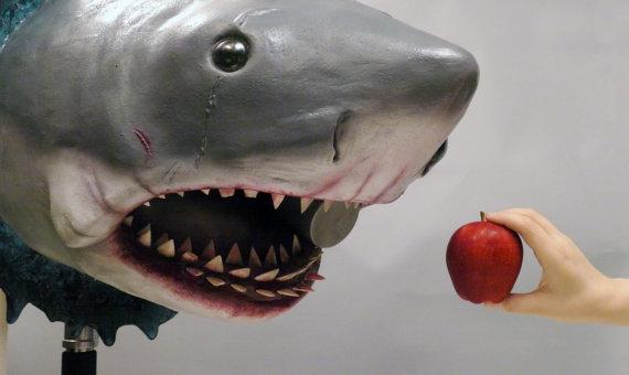 Bruce Jaws Bust Prop Size Comparison - Geek Decor