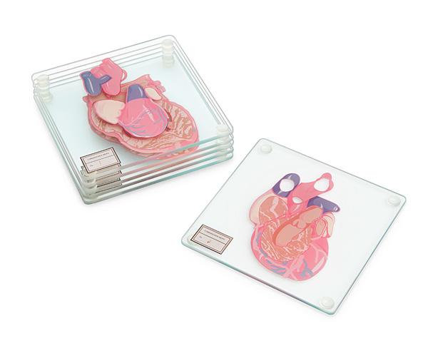 Heart Specimen Coasters - Geek Decor