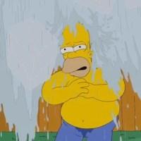 Homer Simpson também entrou no Desafio do Balde de Gelo