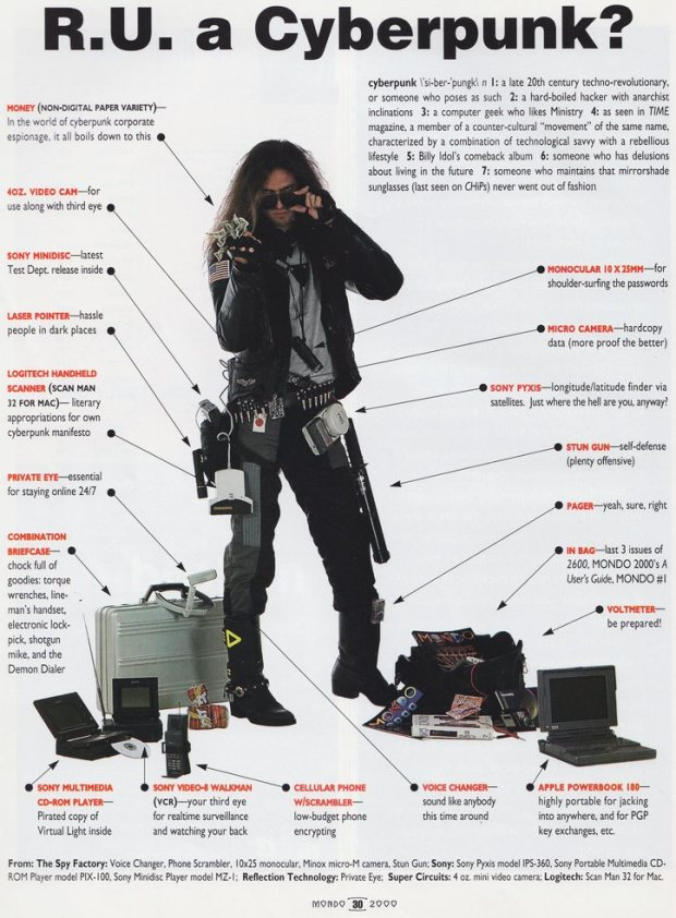 Mondo 2000 Are You A Cyberpunk?