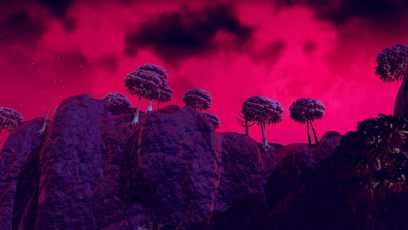 NMS #6