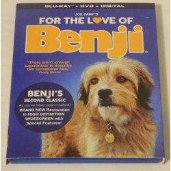 Small Crop Of Benji Dog Breed