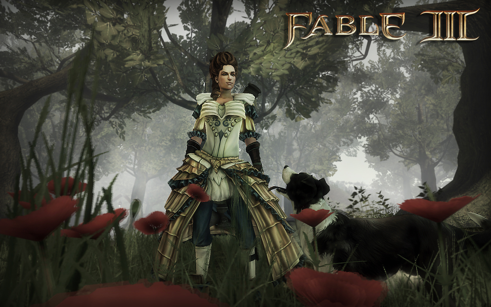 Black Ops 2 Wallpaper Fable Iii Pc Available May 17th With Nvidia 3d Vision