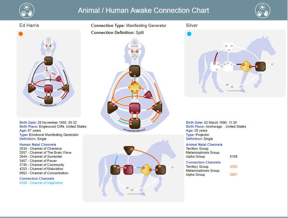 Human Design - New Chart Animal / Human \u2013 Awake Connection Chart