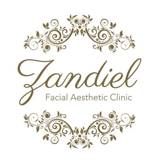 Zandiel Logo Design