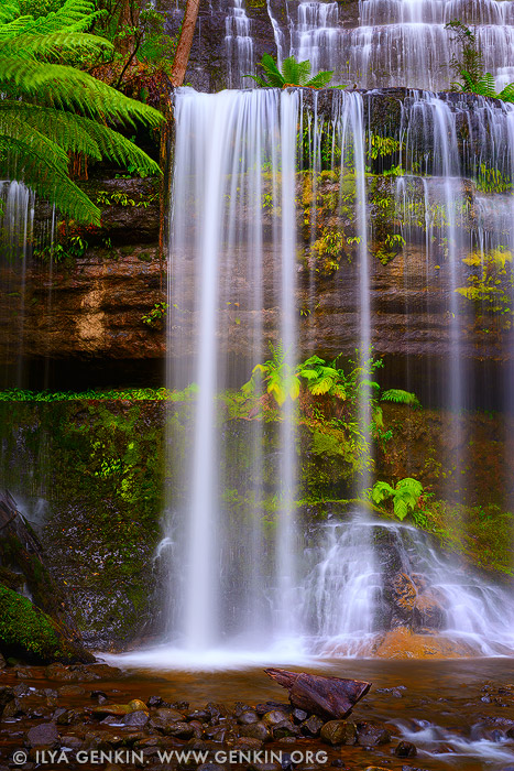 Wallpapers Gallery Falls Russell Falls Image Fine Art Landscape Photography