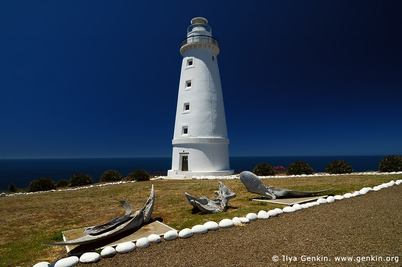 Iphone Built In Wallpapers Cape Willoughby Lighthouse Print Photos Fine Art