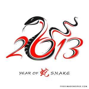2013_snake_year