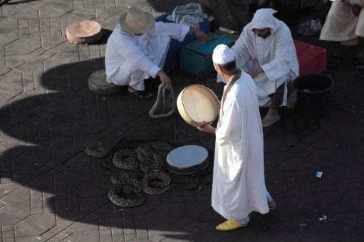 lavorare Marocco