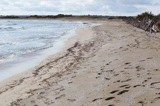 spiaggia vendicari