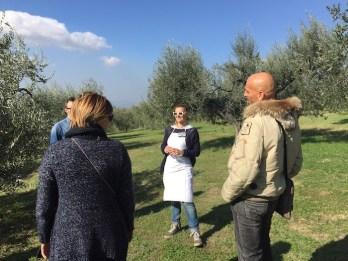 Corinna ci porta in passeggiata nell'oliveto