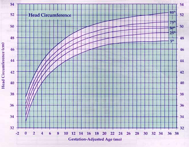US Pediatric CDC Growth Charts
