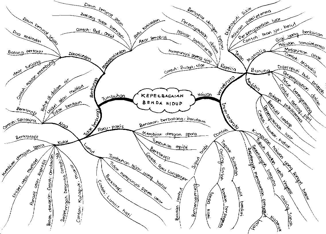 Peta Minda Benda Hidup