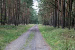 Finland here I come :-)