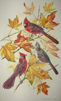 Fall Bird Wallpaper George Glazer Gallery Antique Bird Prints Basil Ede