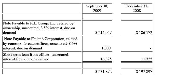 CATALYST RESOURCE GROUP, INC - FORM 10-Q - November 13, 2009 - note payables