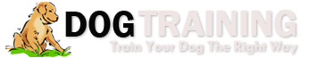 Doggy Dan's Online Dog Trainer Reviews | Complete Online Dog Training