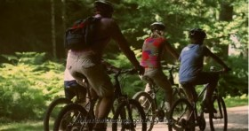 Family Cycling in the New Forest